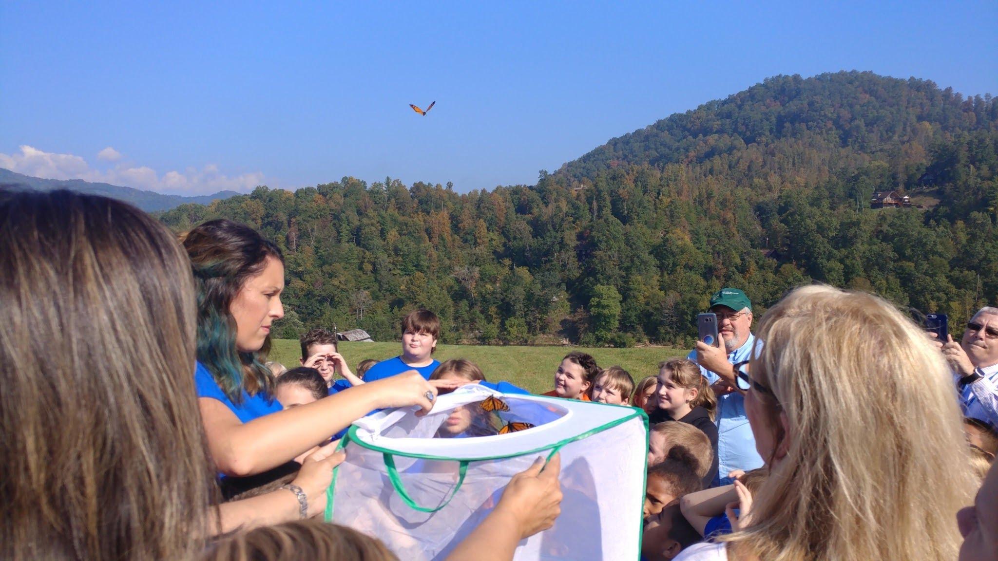 Releasing of our butterflies!